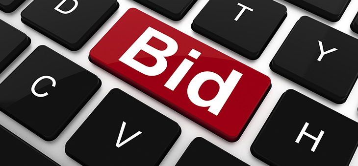 The Power of Manual Bidding